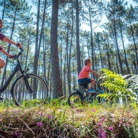 randonnée vélo landes
