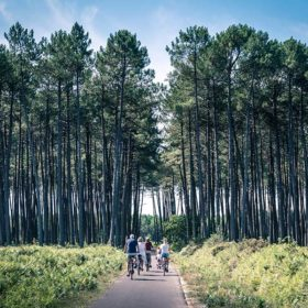 vélo foret landes camping